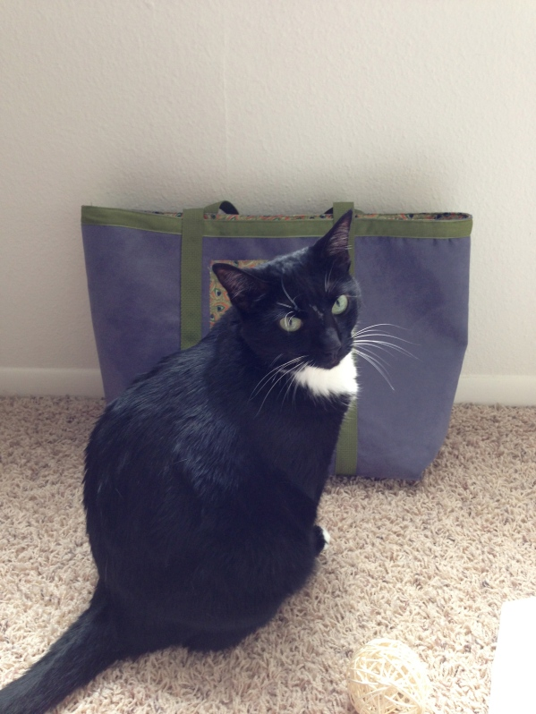 My furry sewing buddy really wanted to climb into the bag while photos were being taken.